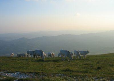 casa di campagna per vacanze Perugia